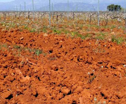 Agricultura suelos composici n 5 parte for A que se denomina suelo