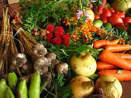 La agricultura ecológica es una agricultura sostenible donde se restringe o prohíbe el uso de determinados recursos. Imagen Wikimedia Commons