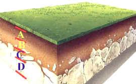 Ecolog a general el suelo textura y estructura for El suelo y sus capas