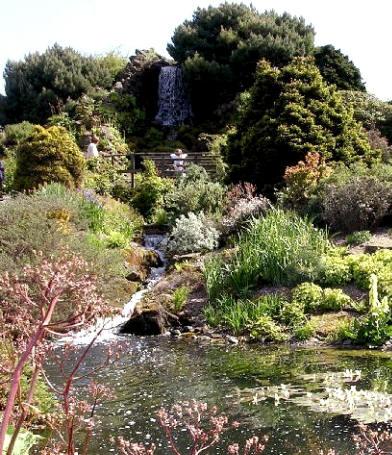 Jardiner a jardines bot nicos jard n bot nico de for Jardin botanico edimburgo